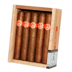 Illusione Oneoff Robusto